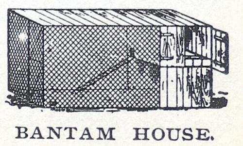 Bantam House