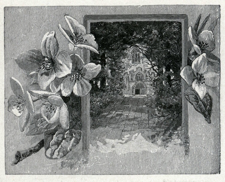 View of the Door