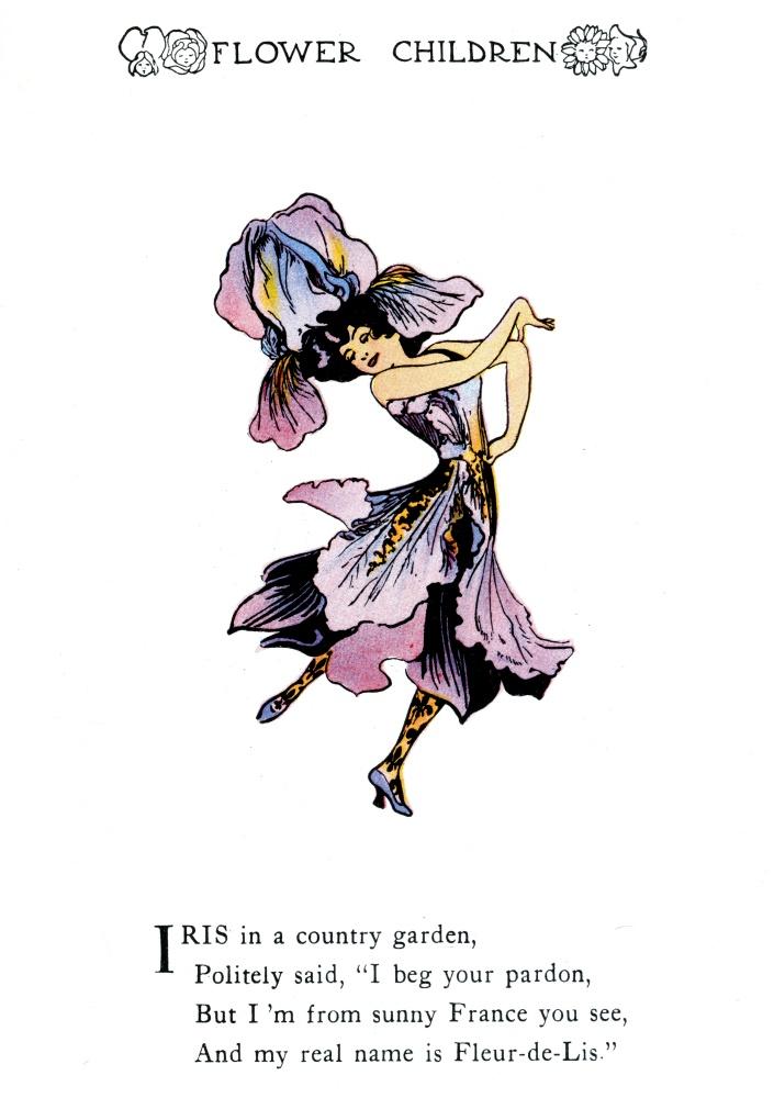 Iris - Fleur-de-Lis
