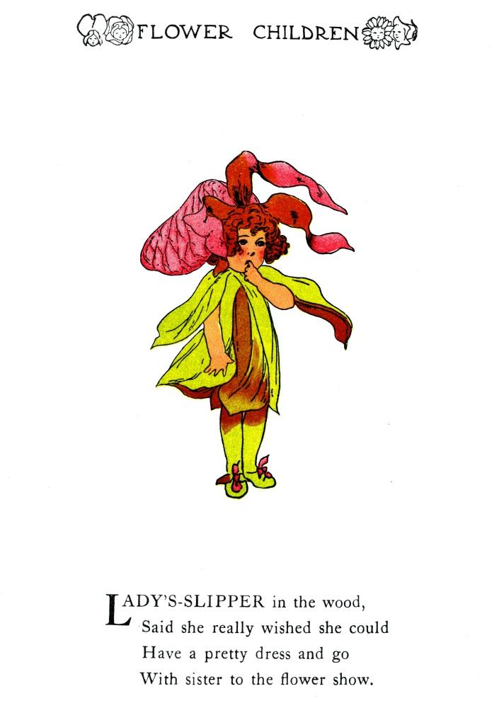 Lady-Slipper