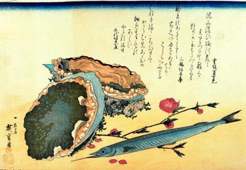 Sayori, Awabi or tokobushi