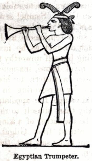 Egyptian Trumpeter