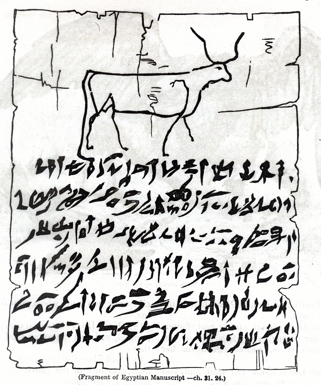 Fragment of Egyptian Manuscript