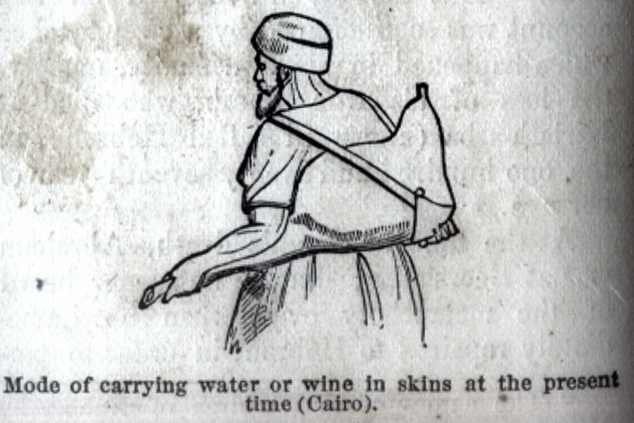Mode of carrying water of wine in skings at the present time (Cairo)