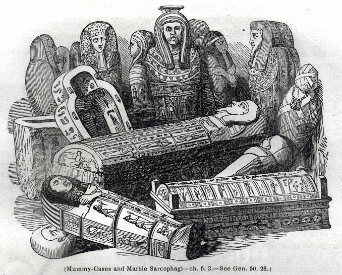 Mummy Cases and Marble Sarcophagi
