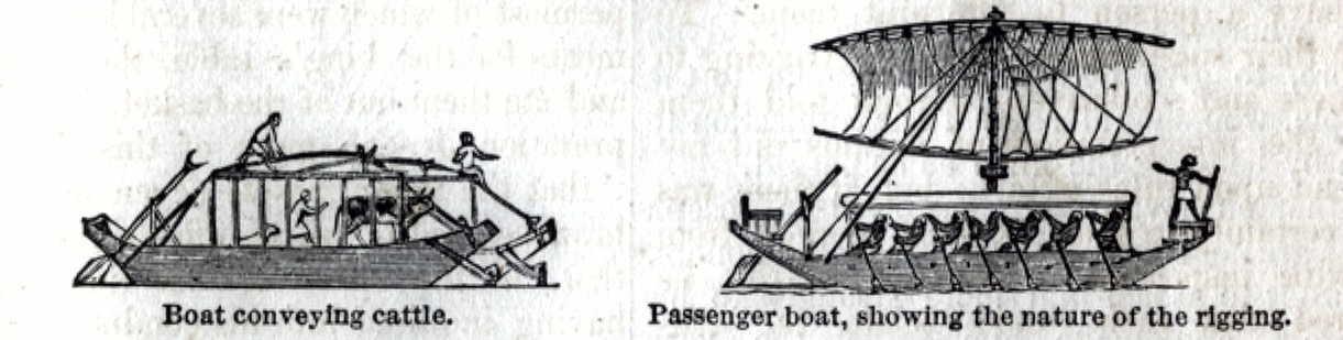 Boat conveying Cattle, Passenger Boat showing the nature of the rigging