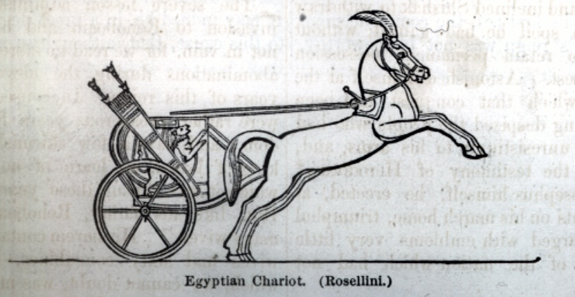 Egyptian Chariot